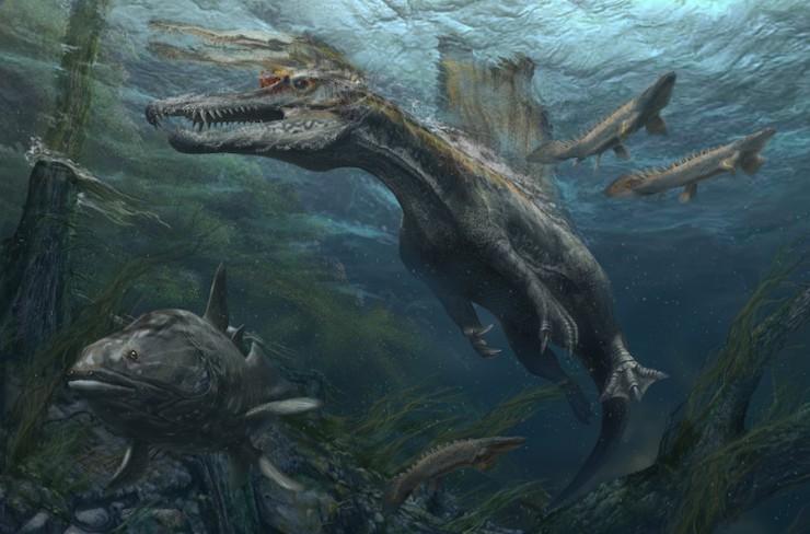 スピノサウルス復元画:©Davide Bonadonna